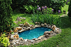 Garden Pond bordered by rock and small boulders and surround by lush vegetation