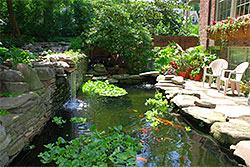 A large koi pond bordered on one side by large retaining wall and on other by stone patio.