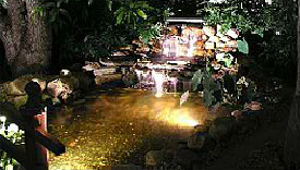 Waterfall and pond surrounded by rocks and foliage and illuminated with spot lights.