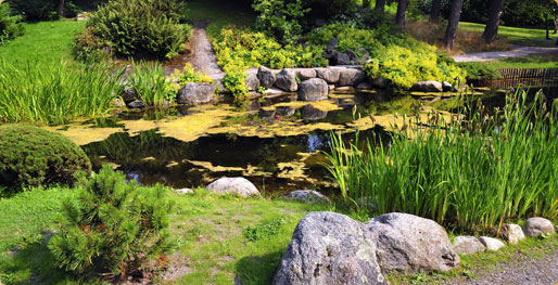 Aquadon Pond Services slide show of beautiful ponds and water gardens and waterfalls.